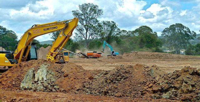 Der tropische Regenwald ist stark gefährdet.
