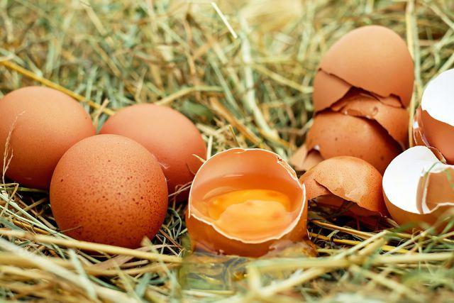 Bio-Eier sind besser für die Tiere und gesünder für dich.