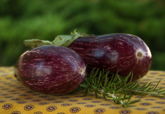 Du kannst bereits Ende Februar damit beginnen, Auberginen anzupflanzen.