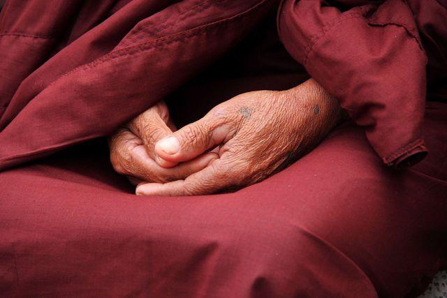Zur Vipassanameditation gibt es unterschiedliche Ansätze von verschiedenen buddhistischen Gelehrten.