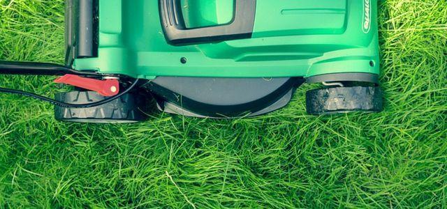 Rasen Mulchen Das Sind Die Vor Und Nachteile Utopiade