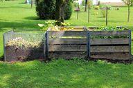Biotonne oder Kompost?