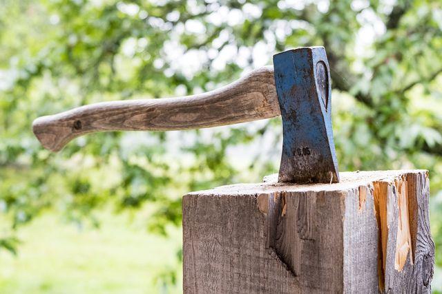 Bei manchen Händlern kannst du den Baum legal selber schlagen.