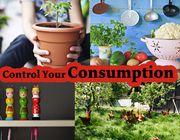 Control your Consumption