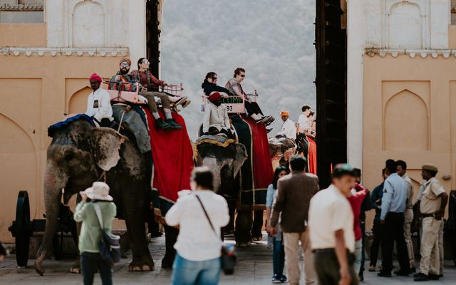 Tourist attractions riding elephants in Asia skips animal tourism