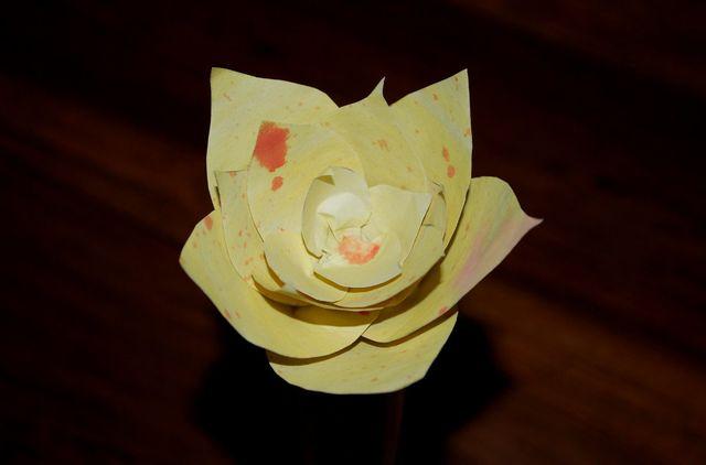 Papierblumen Basteln Kreative Anleitungen Und Ideen Utopiade