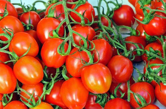 Aus frischen Tomaten kannst du deinen eigenen Tomatensaft machen.