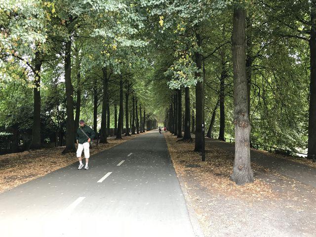 Die Promenade in Münster bietet auf über vier Kilometern Platz für Fußgänger*innen, Radfahrer*innen und Inline-Skater*innen.