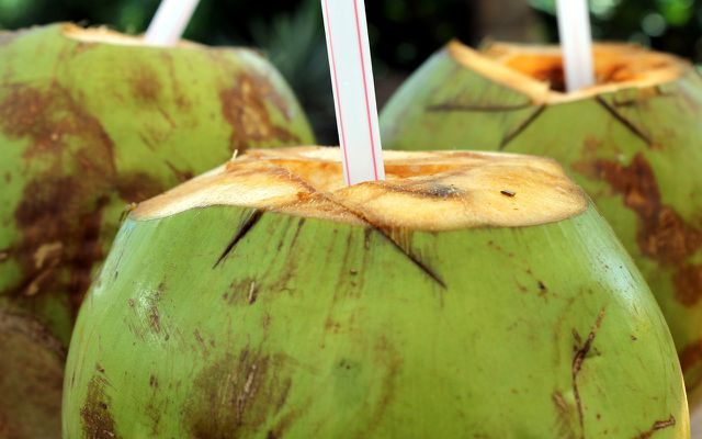 Hype-Produkt aus der Kokosnuss: Kokoswasser