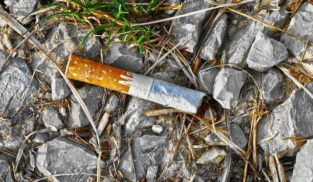 Zigarettenstummel bestehen aus Celluloseacetat-Filtern und Giftstoffen.
