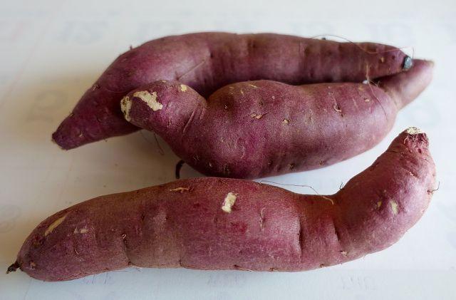 Aus einer einzigen Süßkartoffel können bis zu fünf neue Pflanzen entstehen.