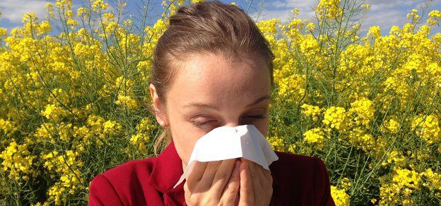 DAAB Siegel Allergie