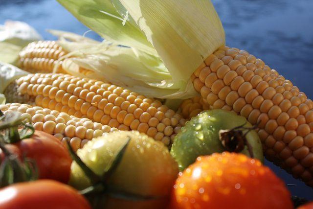 Mais und Tomaten kamen erst Ende des 15. Jahrhundert nach Europa.