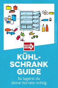 Vorräte richtig lagern und die optimale Kühlschrank-Temperatur einstelle
