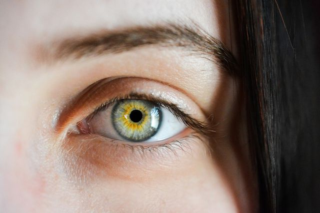 Augenbrauen mit sauber gezupften Konturen.
