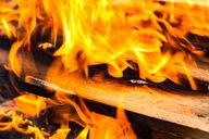 Altholz sollte nicht einfach verbrannt werden