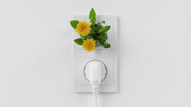 Der Wechsel zu einem Öko-Stromanbieter ist eine einfache Veränderung.