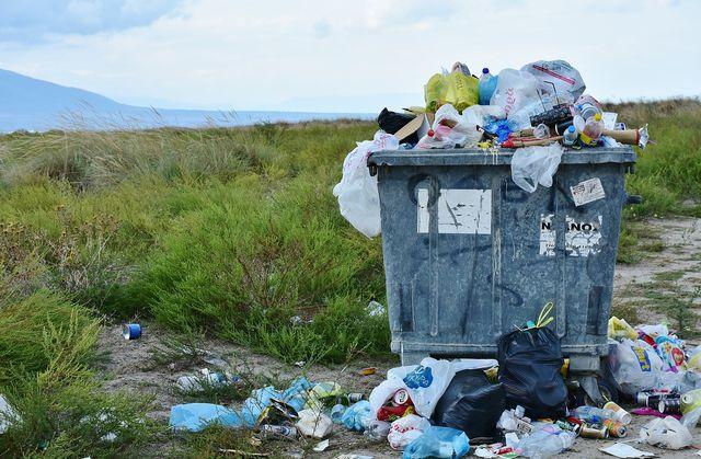 Abfall gehört nicht achtlos weggeworfen.