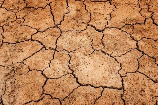 Chemische Düngemittel, Pestizide und Monokulturen schädigen den Boden.