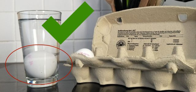 How to tell if eggs are still good water test egg float test