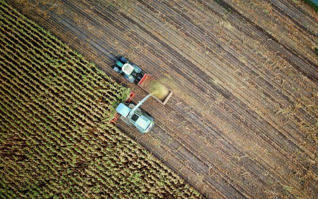 Wahre Verkaufspreise (True Costs) berücksichtigen auch die Kosten, die bei der Produktion zulasten von Klima und Umwelt gehen.