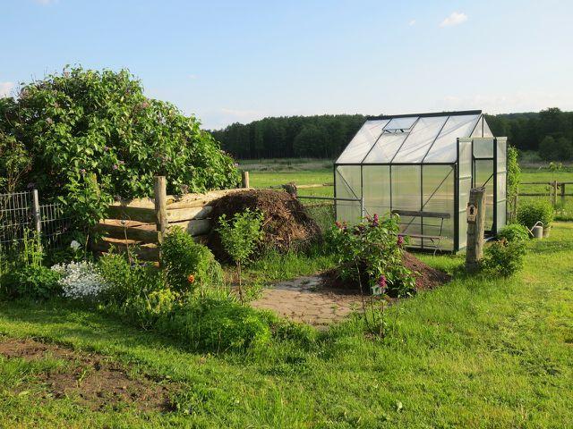 Besonders betroffen sind Pflanzen in Gewächshäusern aufgrund der milden Temperaturen