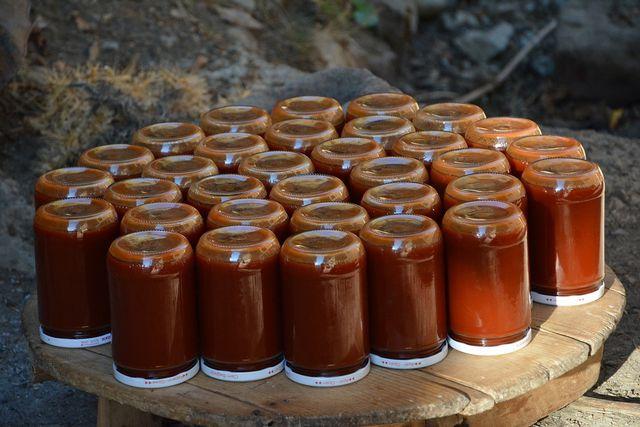 Wenn du die fertige Marmelade an einem dunklen Ort lagerst, hält sie sich mindestens ein Jahr.