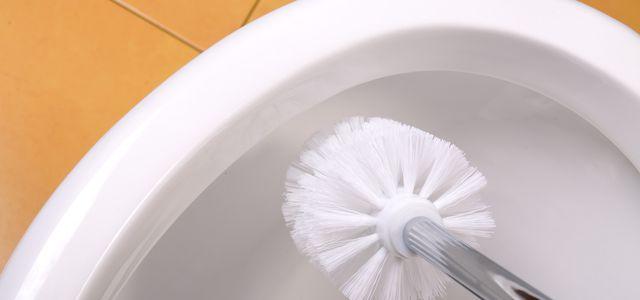 WC mit Hausmitteln reinigen