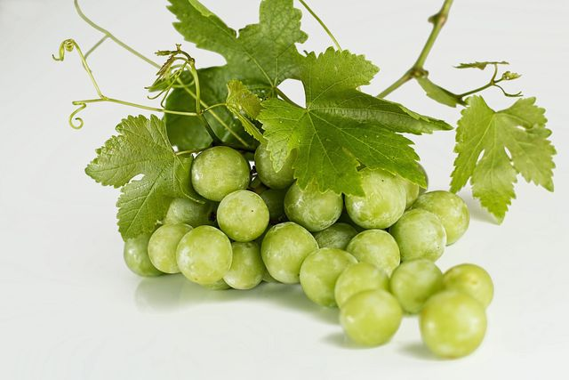 Weintrauben-Kerne sind reich an Antioxidantien.