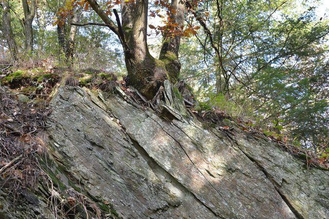 Zugsalbe besteht aus fossilem Schiefer.