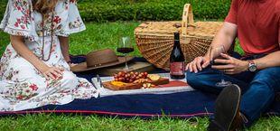 picnic date ideas