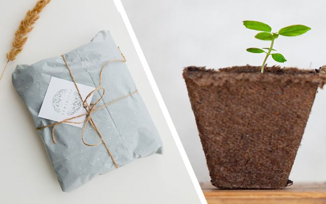 Minimalist Christmas stress-free sustainable holiday gift giving exchange