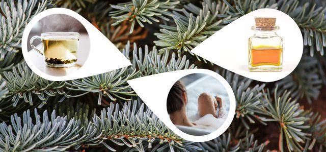 Tannenbaum Wegwerfen.Weihnachtsbaum Upcyceln Viele Kreative Leben Utopia De