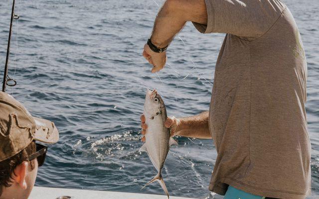 Fisch angeln fischen