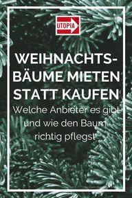 Gute Idee: Weihnachtsbäume mieten statt kaufen