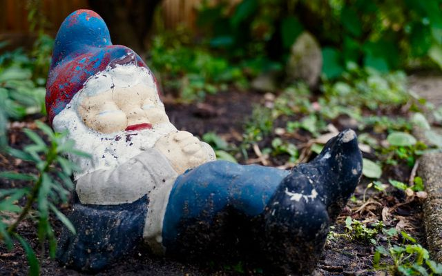 Improve your immune system limit stress garden gnome
