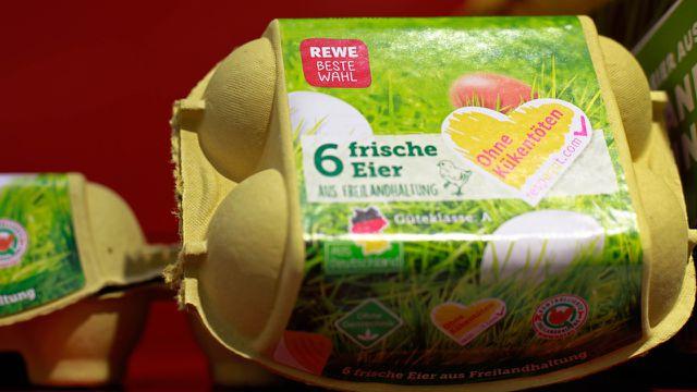 Respeggt-Eier ohne Kükentöten
