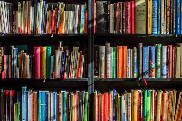 Kostenlose Bücher kannst du auch in deinem eigenen Heimatort finden.