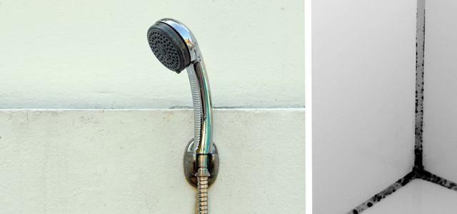 Duschkabine reinigen: mit diesen Tipps klappt\'s - Utopia.de
