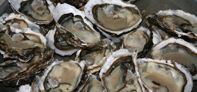 Austern enthalten zwar viel Zink, aber auch viele Schwermetalle.