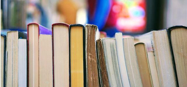 Weihnachtsgeschenk-Inspiration: 8 Bücher, um Wirtschaft neu zu denken!