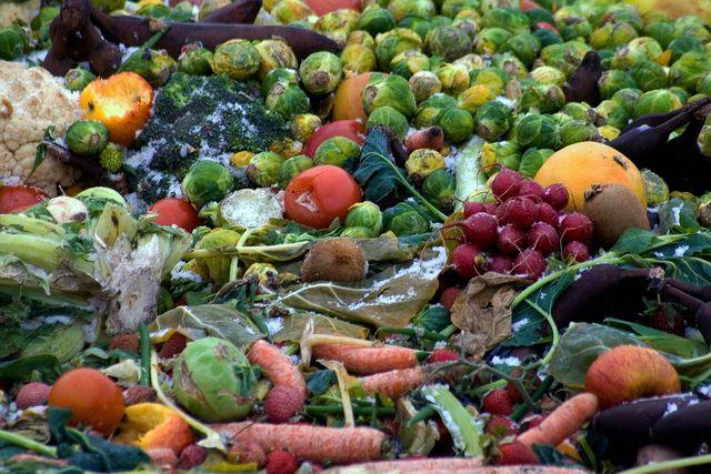Um das möglichst zu vermeiden, solltest du Obst und Gemüse richtig lagern.