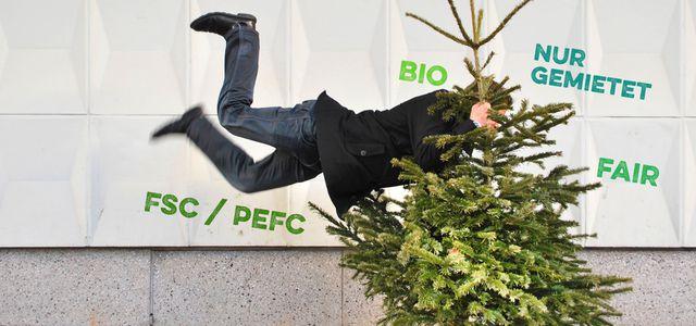Bio Weihnachtsbaum Und Andere Alternativen öko Regional