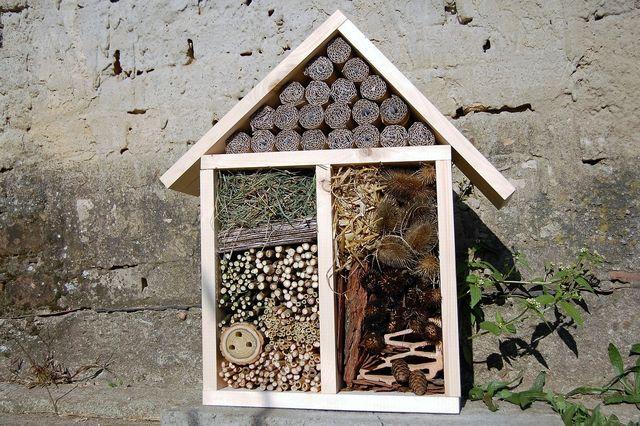 Insektenhotels hilft den Tieren beim Überwintern