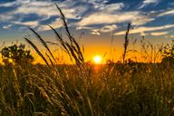 Starke Hitze kann Wetterfühligkeit verursachen.
