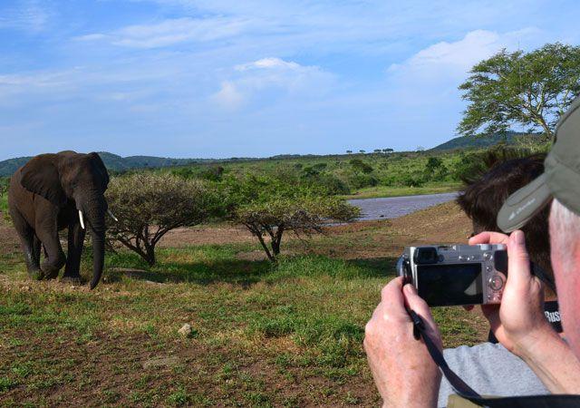Wikinger Reisen Südafrika