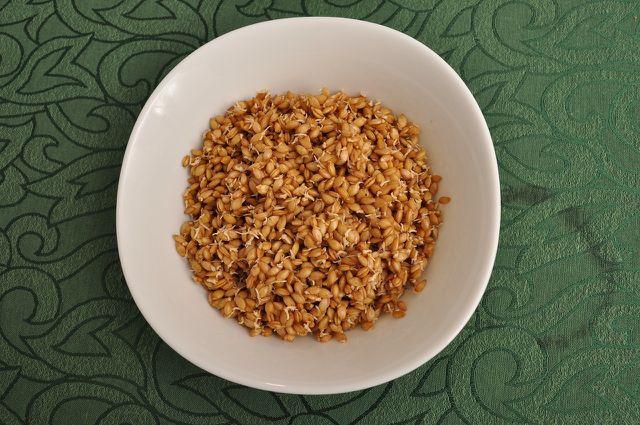 Einkorn ist eine nährstoffreiche Alternative zu herkömmlichen Weizen-Produkten