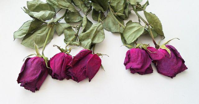 Mit Salz, Waschmittel oder Silica-Gel bleibt auch die Farbe der Rosen erhalten.