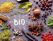 Bio Gewürze kaufen online Versand