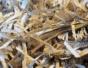 Can you recycle shredded paper